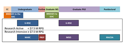 The figure shows the trainee pathway, including community college (CC) students, undergraduates, postbaccalaureates (Postbac), graduate master's trainees (Graduate MS), doctoral trainees (Graduate PhD), and postdoctoral trainees. The NIGMS diversity-focused programs are color-coded to match the trainee stage supported.